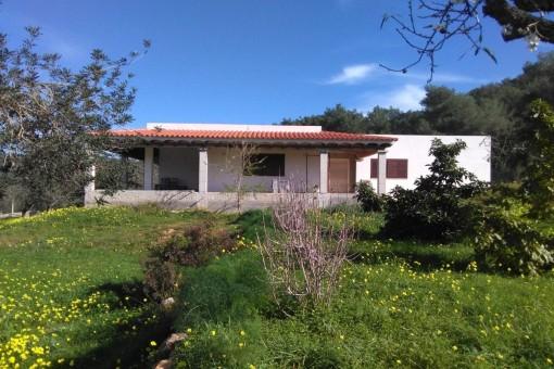 Maravillosa finca con casa sin terminar rodeada de una exuberante vegetación en Santa Eulalia del Río